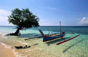 Туры в Индонезию. Транспорт Индонезии