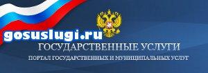 Оформление загранпаспорта через интернет официальный сайт gosuslugi.ru