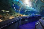 Аквариум «Подводный мир» (Underwater World)